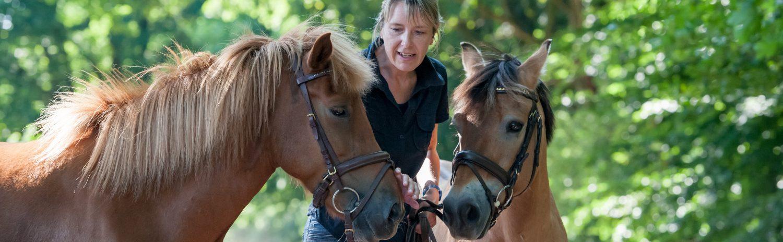 Hippotherapie – Susanne Reichel